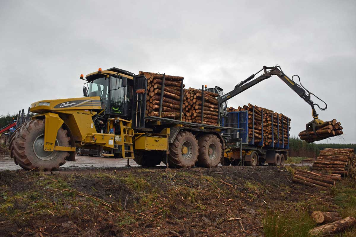 9205 Terragator with a Kesla 2012T loader unloading wood in the forest