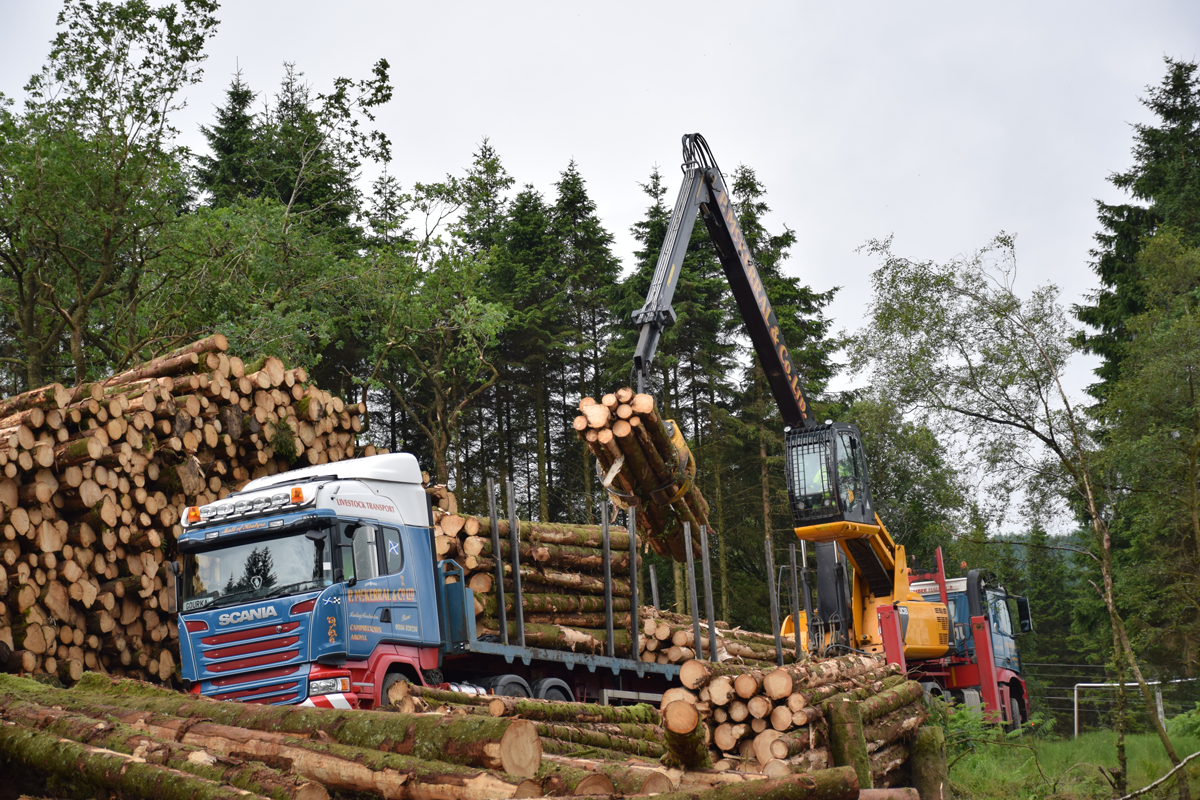 Keeping essential timber supplies flowing