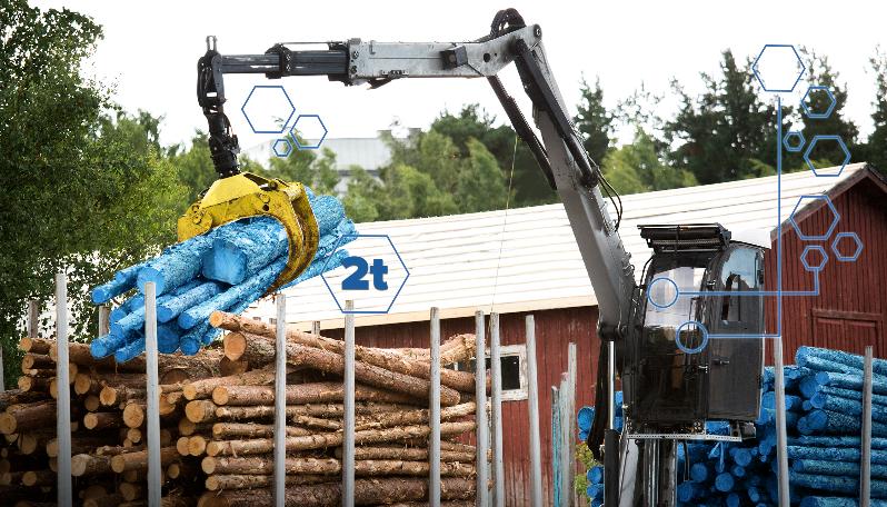 Tamtron Timber Weighing Link