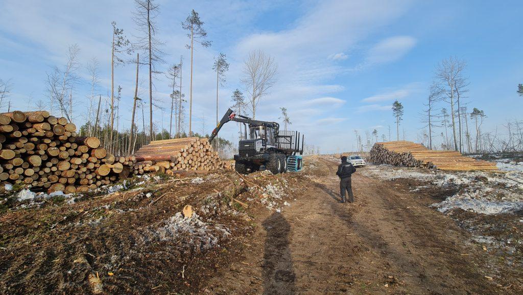 Logset Forwarder