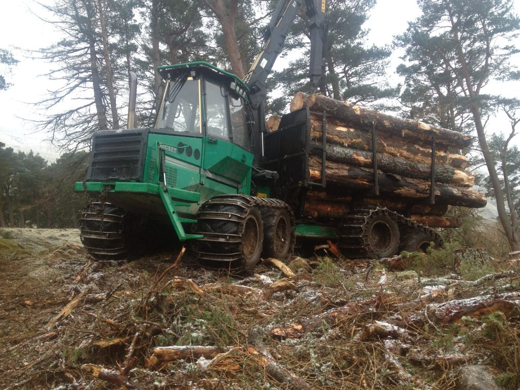 Used Forestry Equipment For Sale - Logset Forwarder 6F