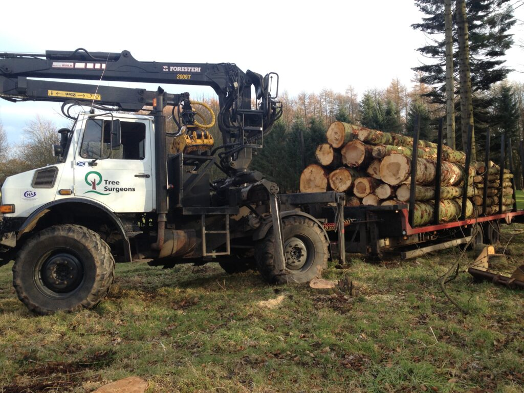 Used Machinery for sale - Mercedes Unimog 1650AG with Kesla 2009 Timber Crane