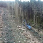 A 69% increase in logging claimed by Euro study may only be actually 6%