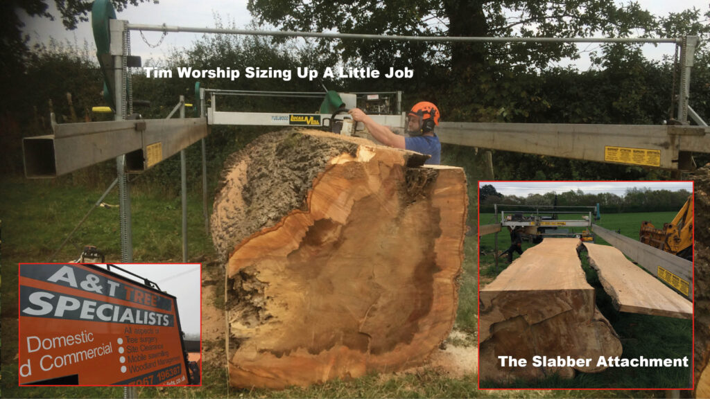 Tim Worship of A & T Tree Specialists