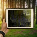 Outsight's Real Time Forestry Solution