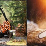 Cortec® EcoLine® Lubricants Add a New Dimension to the Idea of Sustainable Forestry