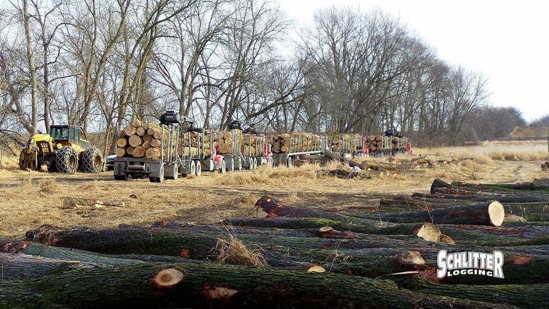 Schlitter Logging