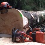 Chainsaw Operators Required